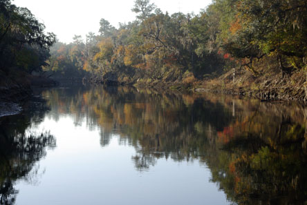 Middle Suwannee River