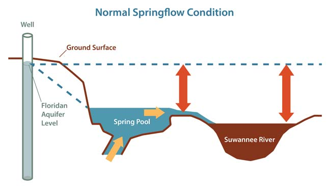 Graphic Illustrating Normal Springflow Condition
