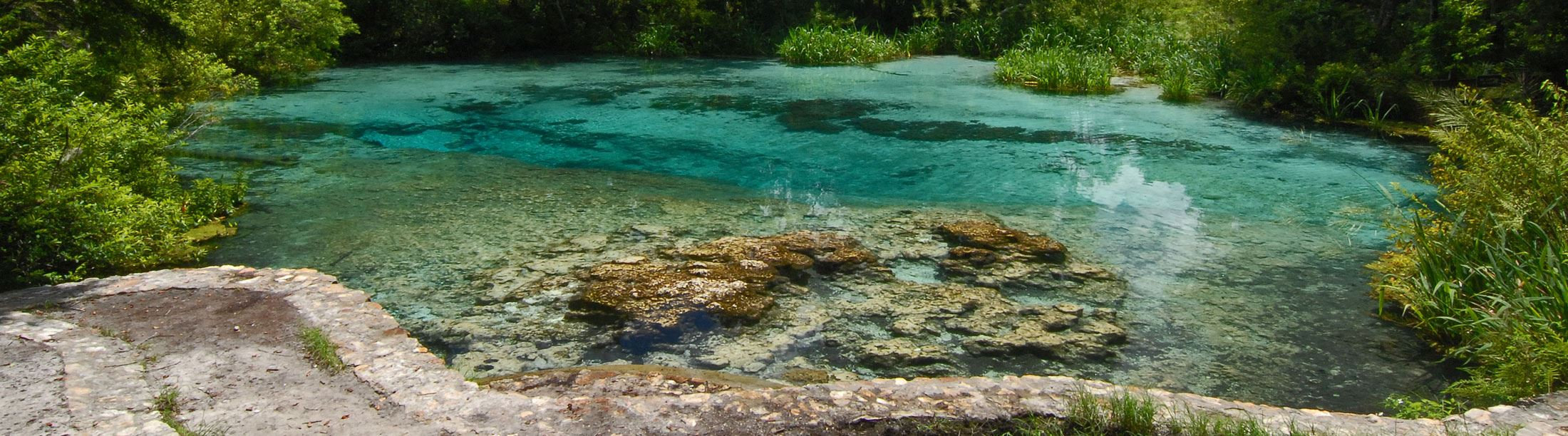 Clear, blue water at Ichetuckenee Springs