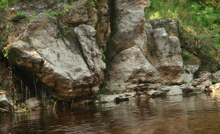 Rocks lining the Withlacoochee River
