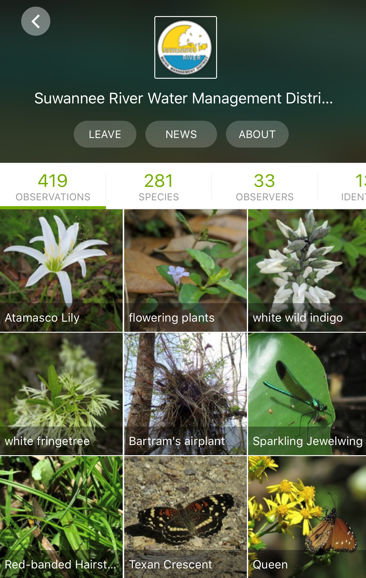 Screenshot of iNaturalist app