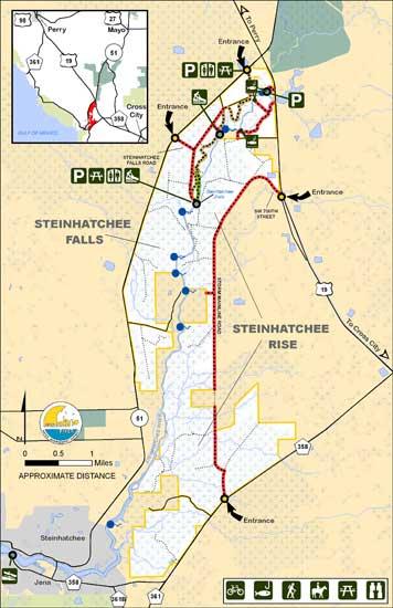 Suwannee river water management district steinhatchee for Steinhatchee fl fishing