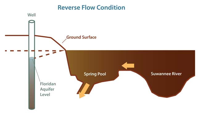 Reverse Flow Condition