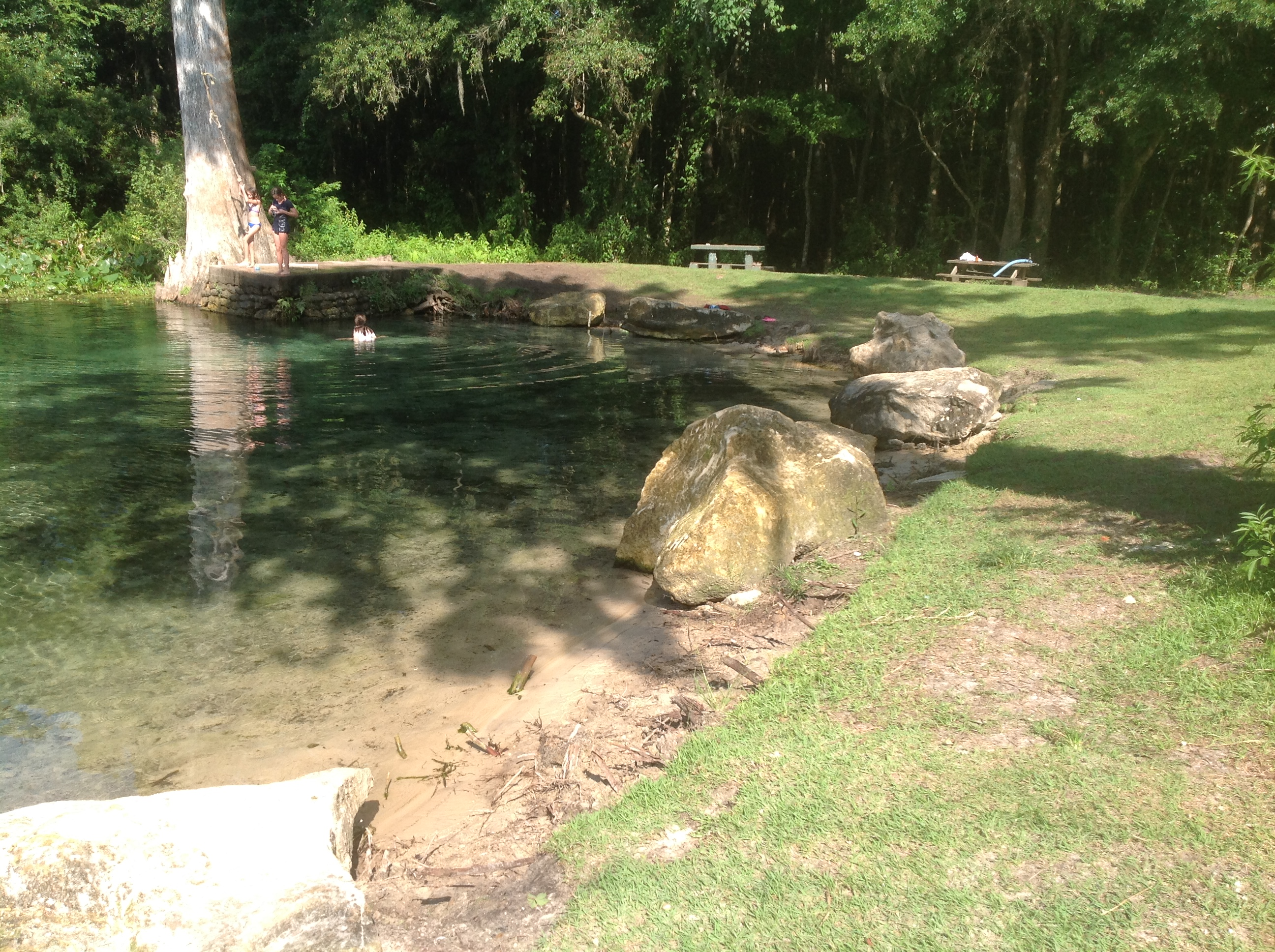 Wacissa Springs Restoration