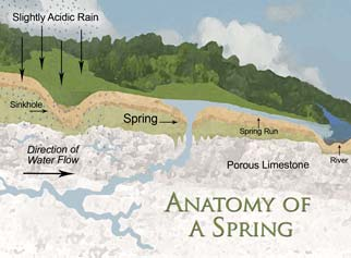 Anatomy of a Spring