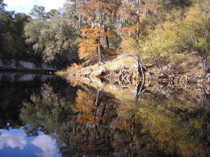 Suwannee River in Fall